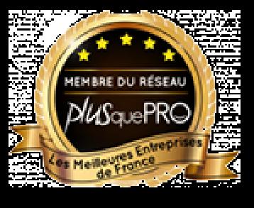 Le logo Plus que Pro